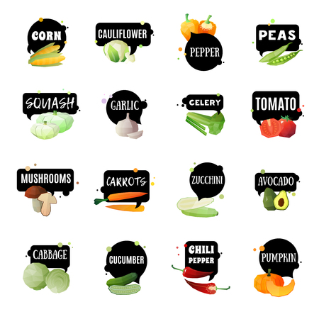 Vegetables label set with sixteen isolated garden produced green grocery polygonal images and appropriate naming tags vector illustration Çizim