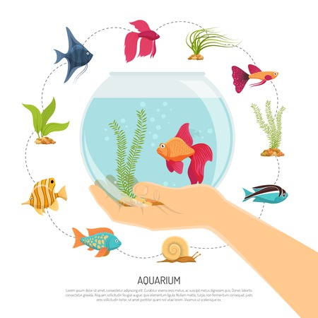 Aquarium background with flat images of various fish species and sea weed with editable text description vector illustration Illustration