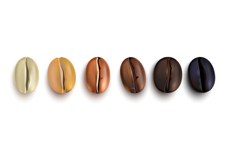 Coffee beans realistic set showing various stages of roasting isolated on white background vector illustration Ilustração