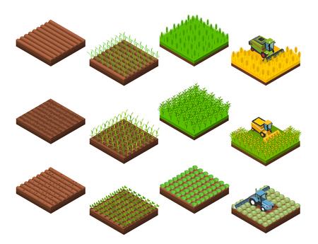 Landbouwbedrijf het oogsten plaatste met de geïsoleerde isometrische vierkante beelden van de gebiedssectie in diverse stadia van het oogsten verrichtingen vectorillustratie