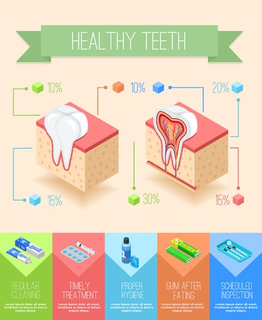 sectional: Dentist infographics with isometric sectional view of gums and teeth with images of dental care supplies vector illustration Illustration
