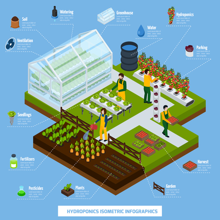 Hydroponics and aeroponics isometric infographic set with plants and farming symbols vector illustration