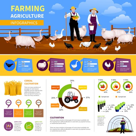 Farming flat infographics with information and charts about livestock and poultry, agricultural vehicle, vegetables cultivation vector illustration