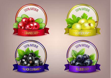 Berry labels realistic eco collection with branches of gooseberry cranberry blueberry and black currant isolated vector illustration