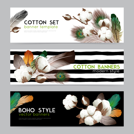 Cotton bolls with feathers boho style decoration Ilustrace
