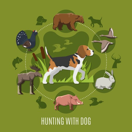 Hunting with dog concept with bear hare birds and elk flat vector illustration Illustration