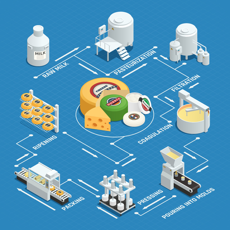 Dairy factory cheese production process isometric flowchart with milk pasteurization coagulation pressing waxing and ripening vector illustration