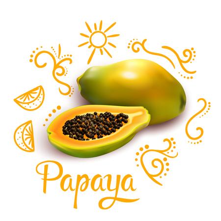 華麗さと白い背景のベクトル図に柑橘系の果物 3 d パパイヤ周りオレンジの落書きから構成
