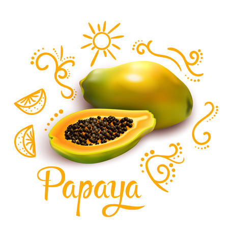 Composition from orange doodles around 3d papaya with flourishes and citrus fruit on white background vector illustration