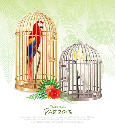 Bird market parrots poster with realistic images of rare birds in cumbersome cages with editable text vector illustration