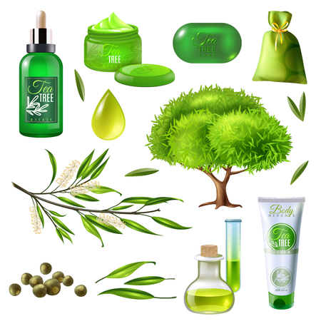 Products of tea tree set including parts of plant, oil droplet, soap, creams, sachet isolated vector illustration Çizim