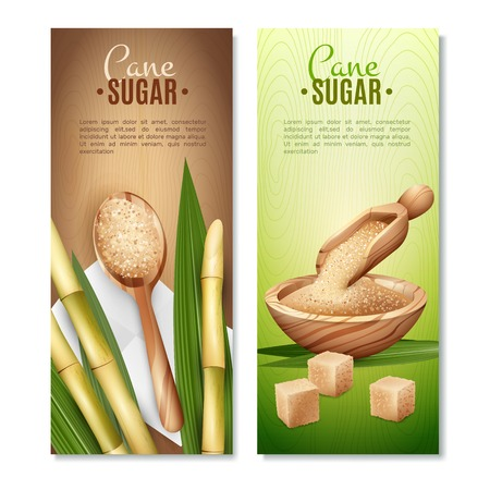 Set of two cane sugar vertical banners with reed sticks and leaves cubic and sand sugar vector illustration
