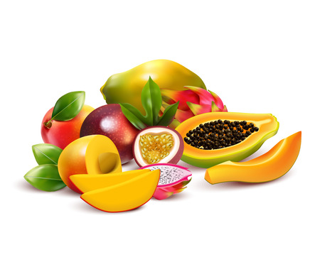 Tropical fruits composition with pitaya mango dragon fruit cut up and ripe with leaves in a bunch vector illustration