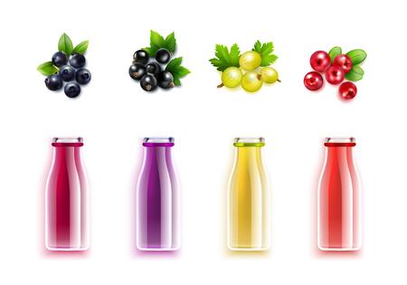 ベリー ジュース現実的な色のボトルとブルーベリー クランベリー スグリ、黒スグリの実ベクトル図のブラシ設定