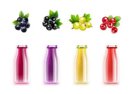 Berry juice realistic set with colored bottles and brushes of blueberry cranberry gooseberry and black currant vector illustration
