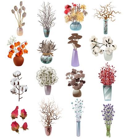 Inzameling van kleurrijke boeketten in vazen van diverse vormen met droge bloemen voor ontwerpersbloemisten op witte vlakke vectorillustratie als achtergrond