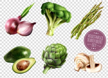 De reeks realistische groenten isoleerde pictogrammen op transparante achtergrond met van de de broccoliartisjok van de avocadoui asperge de paddestoelen vectorillustratie