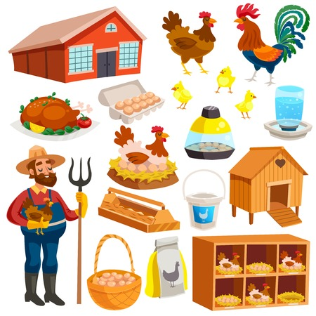Poultry farm elements set with owner birds barn coop roost chicken meat and eggs isolated vector illustration