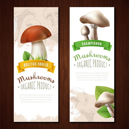 Mushrooms vertical banners set with images of edible boletus and champignons with decorative background and text vector illustration