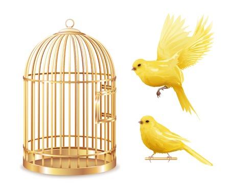 Kanarie birdcage reeks van geïsoleerde lege goud behandelde kooi en realistische canarybirdbeelden op lege vectorillustratie als achtergrond Stock Illustratie