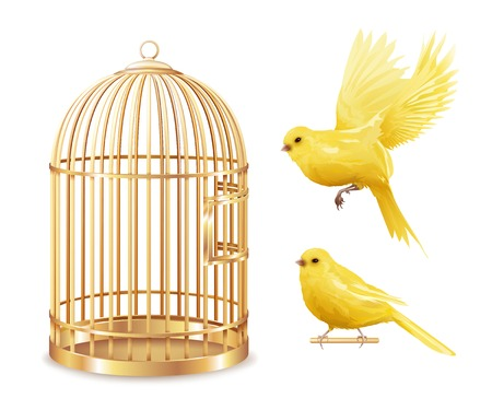 Canary birdcage set of isolated empty gold covered cage and realistic canarybird images on blank background vector illustration Illustration
