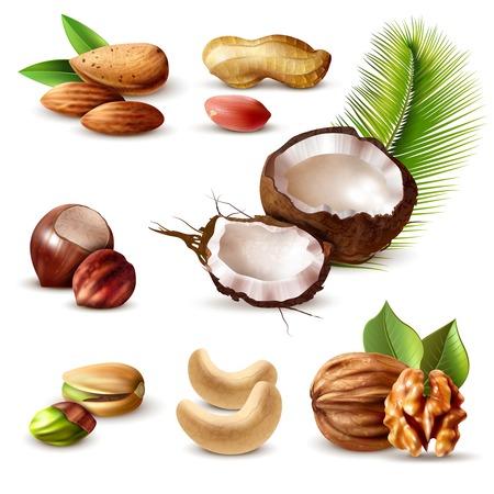 Noten realistische set met hazelnoot, pinda, cashewnoten, walnoot, pistache, kokosnoot, amandel en groene bladeren geïsoleerde vectorillustratie