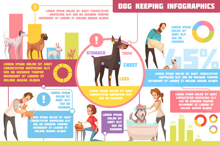 Pet dogs feeding upbringing training practical tips with veterinarian advice retro cartoon infographic poster abstract vector illustration Illustration