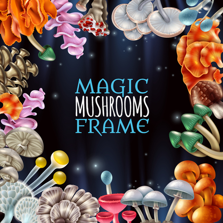 Decorative frame with bright magic mushrooms of various shape on shiny black background with sparks vector illustration