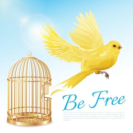 Manifesto con il canarino che vola dalla gabbia dorata aperta e che ottiene la libertà sull'illustrazione bianca blu di vettore del fondo Archivio Fotografico - 85426596