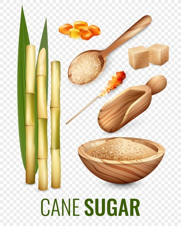 Cane sugar transparent set with spoon and bowl cartoon isolated vector illustration