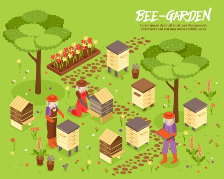 Bee keeping yard with beehives honey harvesting isometric poster with apiary friendly plants garden background vector illustration