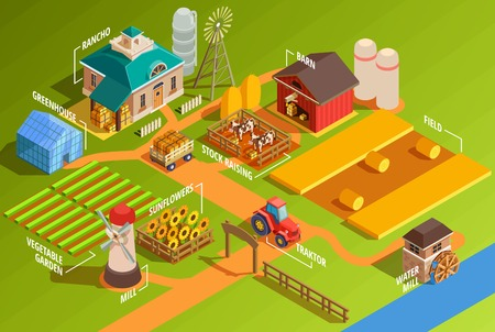 Colorful farm isometric infographics with rural buildings agricultural machinery garden and domestic animals 3d vector illustration