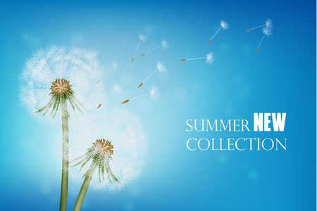 Summer poster with wither dandelion and flying seeds on blue sky background realistic vector illustration Ilustracja