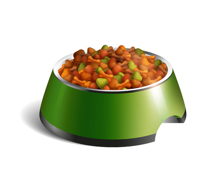 Green color realistic isolated dog bowl dry food composition with dry food vector illustration