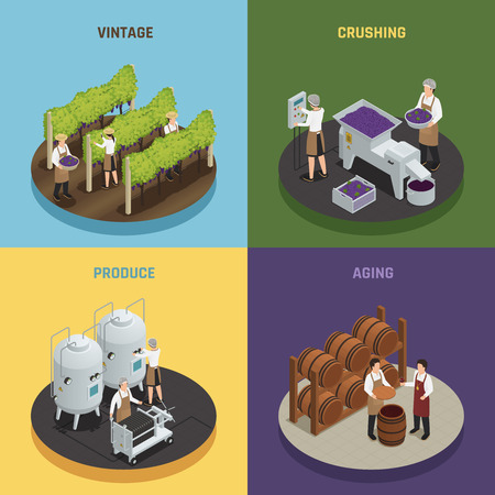 Wine production design concept with vintage, crushing, produce and aging square compositions, isometric vector illustration
