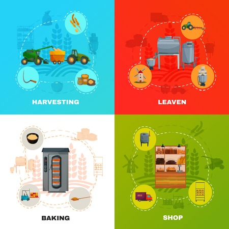 Bread production concept with cereal harvesting, kneading with yeast, baking, goods delivery, shop isolated vector illustration