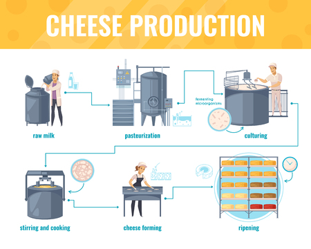 Cheese production cartoon infographics on white background with processing line including milk pasteurization, product ripening, vector illustration Ilustração