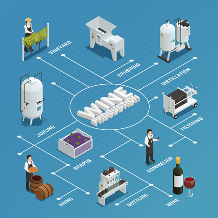 filtering: Wine production process isometric flowchart with grapes crushing distillation filtering bottling juicing aging elements vector illustration