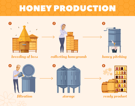 Apiary honey production cartoon flowchart poster from  bees breeding collecting honeycombs to storage infographic composition vector illustration Banco de Imagens - 88231784
