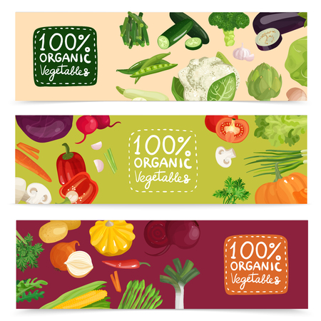 Set of horizontal banners with organic vegetables including pea, onion, radish, corn, cabbage, cucumber isolated vector illustration