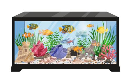 수족관 탱크 만화 벡터 일러스트 수영 이국적인 민물 물고기 조개 해초 장비 및 액세서리