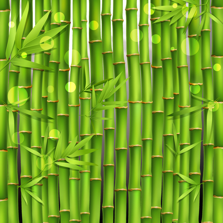 Oriental seamless green pattern composed from young tropical bamboo shoots and leaves realistic vector illustration Иллюстрация