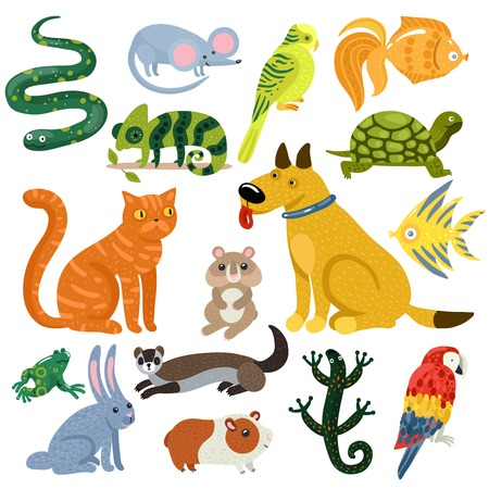 Pets set of colorful icons with cat and dog, fishes, rodents, parrots and reptiles.