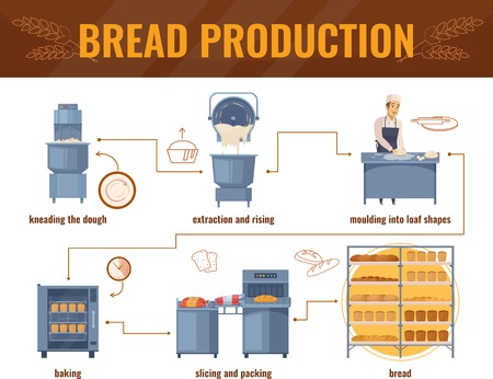 Bread production cartoon infographics with processing line from kneading dough to packing of baked products vector illustration