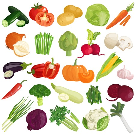 Vegetables icons set on white background, vector illustration. Illustration