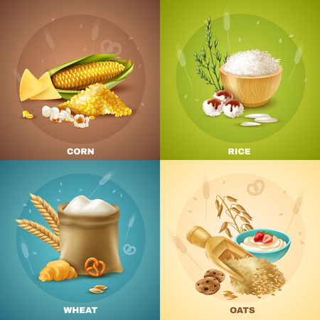Four isolated cereals design concept or icon set vector illustration. Ilustracja