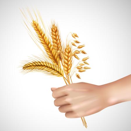 白い背景の上の女性手現実的な組成の小麦、大麦、エンバクを含む穀物の穂ベクトル イラスト  イラスト・ベクター素材