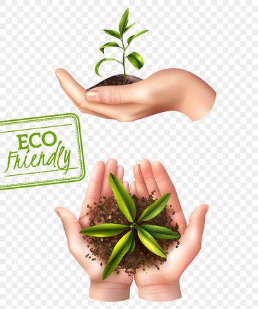 Ecology concept including lettering eco friendly, realistic female hands with sprout isolated on transparent background vector illustration