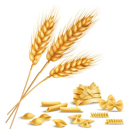 Realistic ripe wheat spikelets and pasta including fusilli, farfalle, penne composition on white illustration.