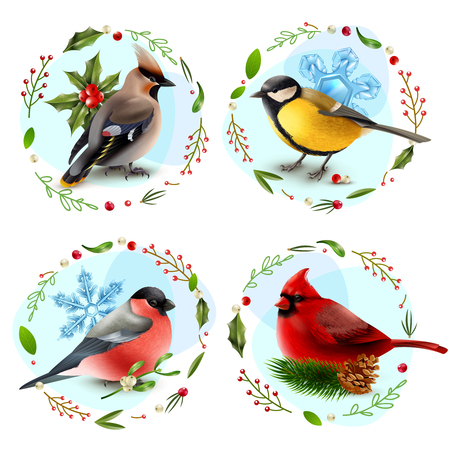 Design concept with winter birds, snowflakes, spruce branch, decorative frames from berries and leaves isolated vector illustration